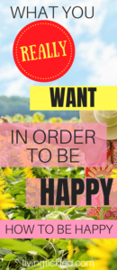 What You Really Want in Order to Be Happy_ How to Be Happy
